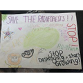 Layna's poster