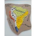 Joseph's salt dough map