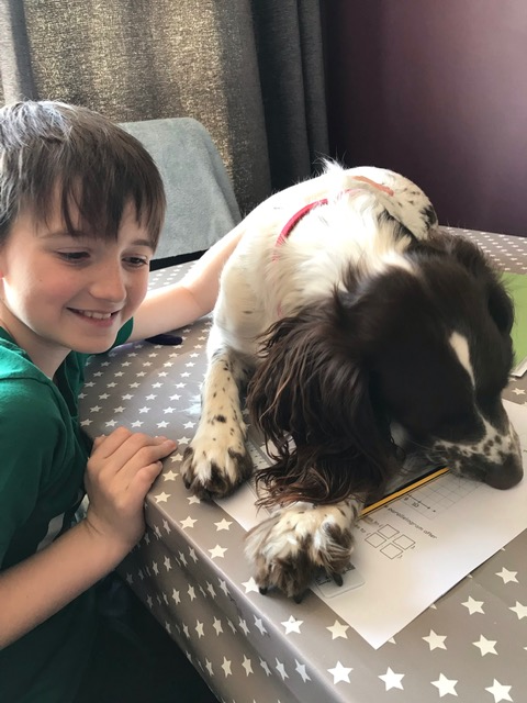 Luna helping to do maths.