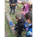 We went on a minibeast hunt in the school grounds.