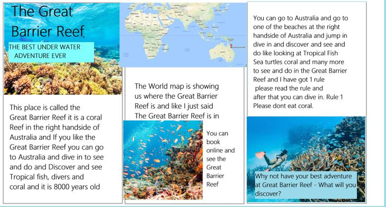 Barrier Reef - Persuasive Leaflet1