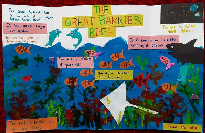 Barrier Reef - Persuasive Leaflet2
