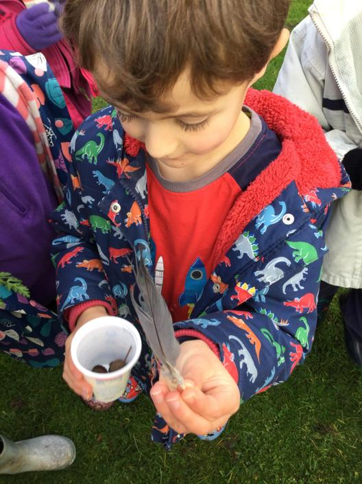 What evidence of animals can we find in the Autumn in our school grounds?