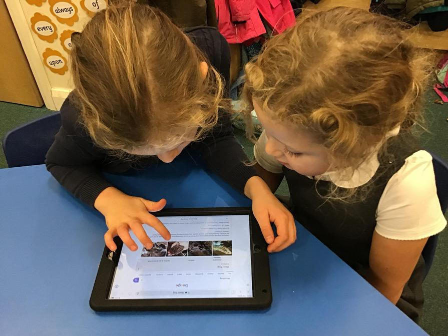 Research using an Ipad
