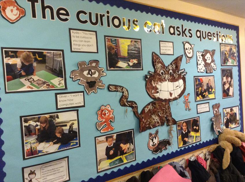 Celebrating curiosity and questioning, Foundation