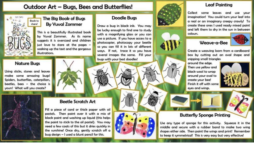Bugs, Bees and Butterflies!