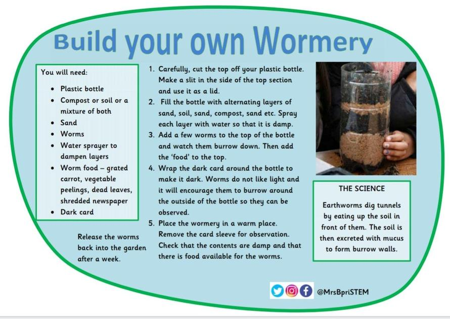 Build Your Own Wormery