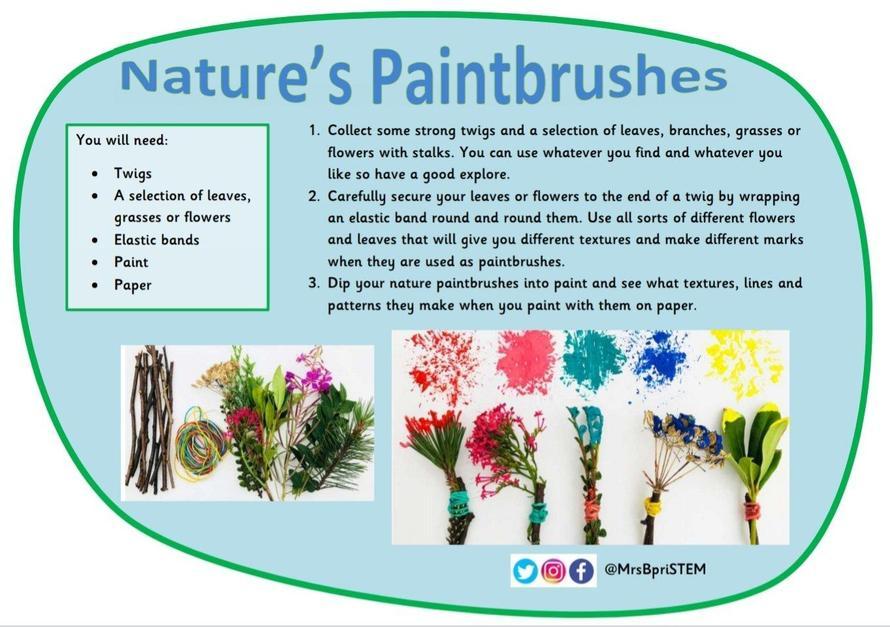 Natures Paintbrushes