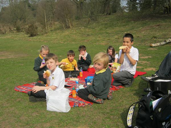 A lovely day for a picnic in the park