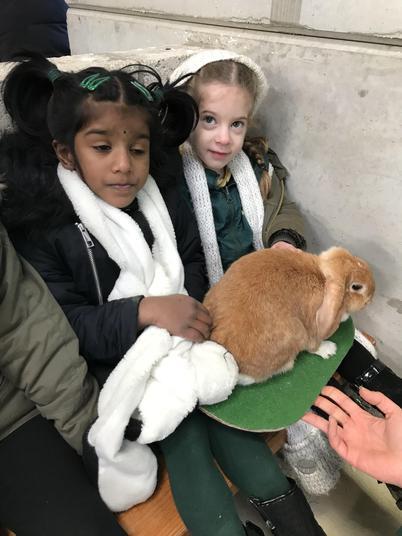 This was Geraldine the Rabbit.