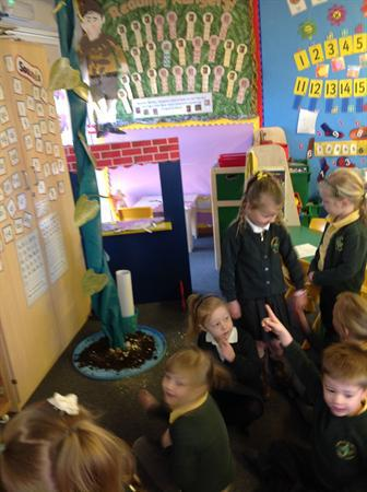 Discovering a beanstalk!