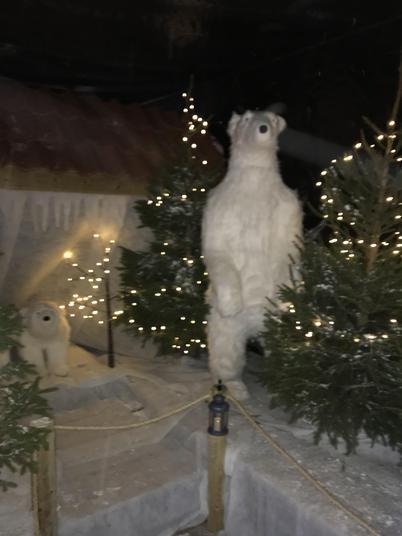 Is that a polar bear??