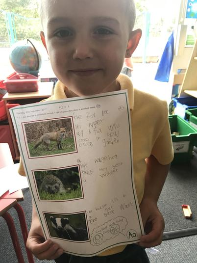 We had to write some facts about the animals.