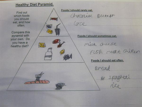 Science work, a healthy diet pyramid