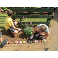 Clumber Class members planting shrubs