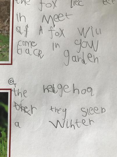 We are really trying hard with our handwriting.