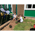 Welbeck Class busy planting