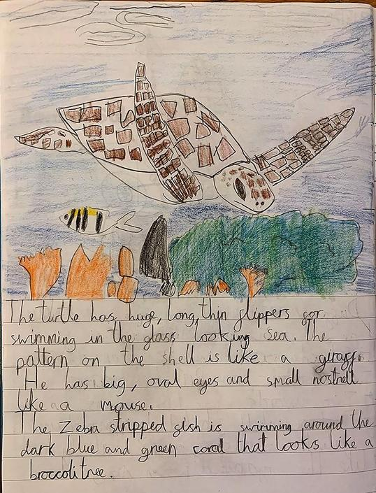 Max's terrific turtle drawing and description.