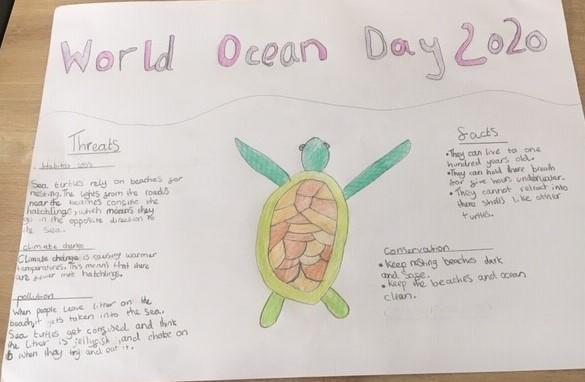 Scarlett's Super Turtle Poster.