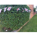 She put up bunting.  Did you have any bunting?