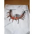Askari's centipede