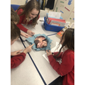 The children looked at the heart of an ox.
