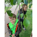 Katie and Jack identifying leaves.