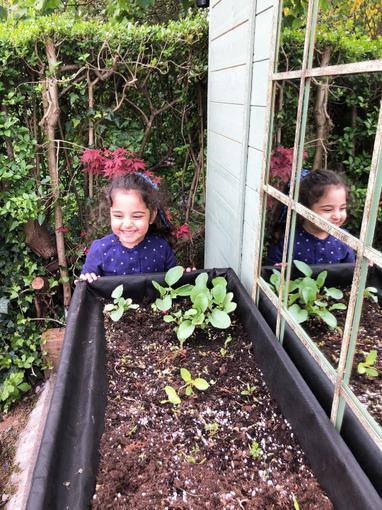 Iyla planting in her garden
