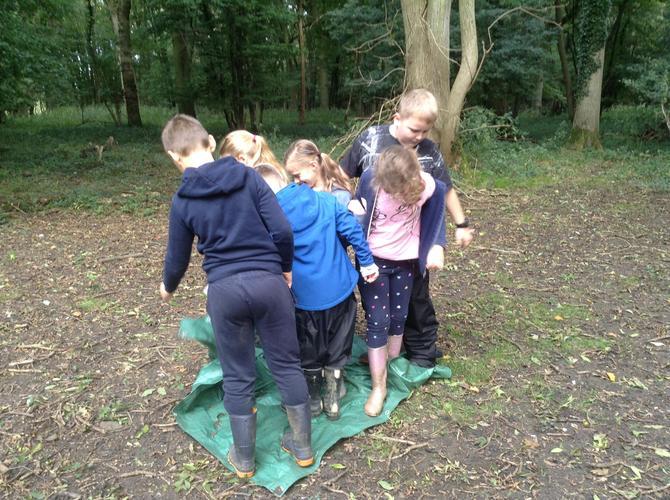 We played tarpaulin flip