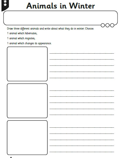 Create your own copy of this - draw the animals and write about them.