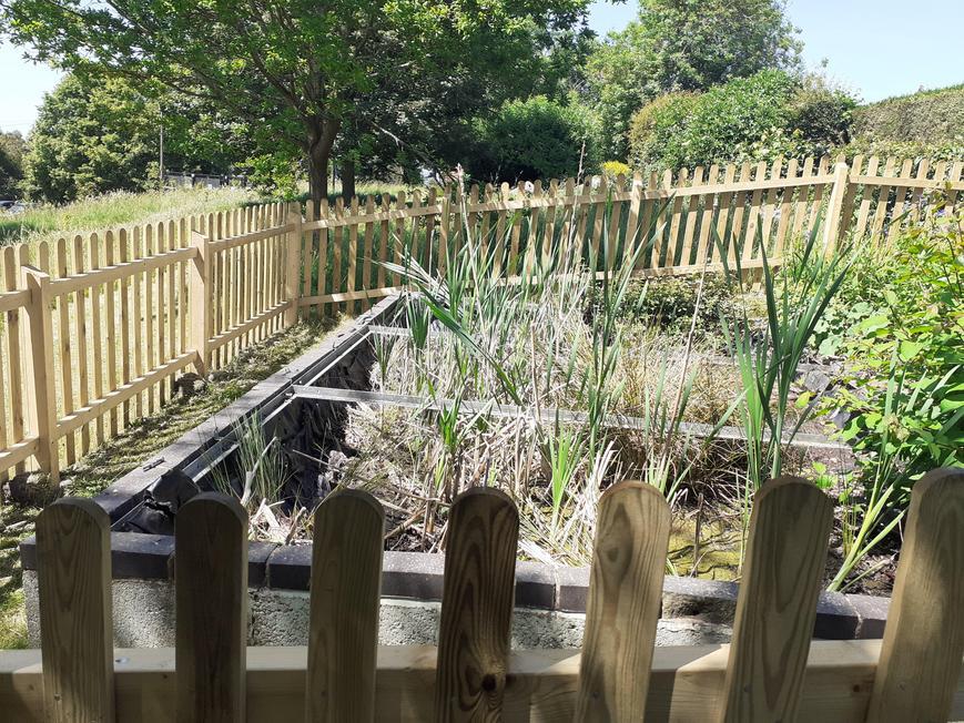 Wetland Project (Merttens site)