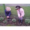 Exploring flowers around our school