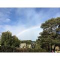 Beating the Blue Monday... a beautiful rainbow