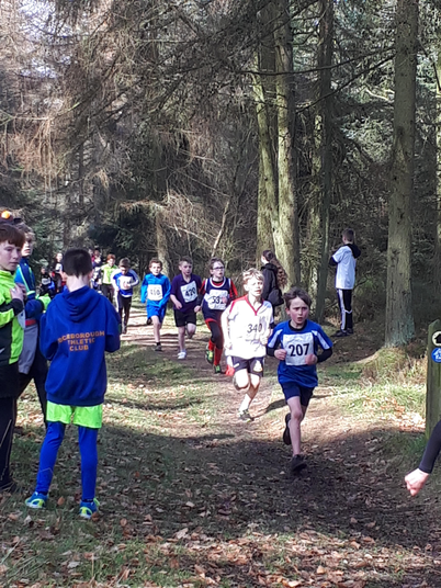 X-Country at Dalby Forest