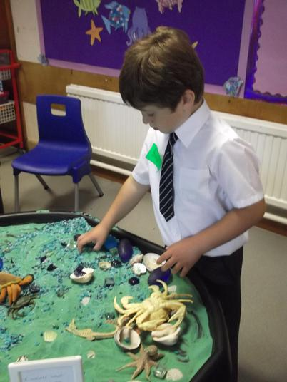 We played with the sea creatures.