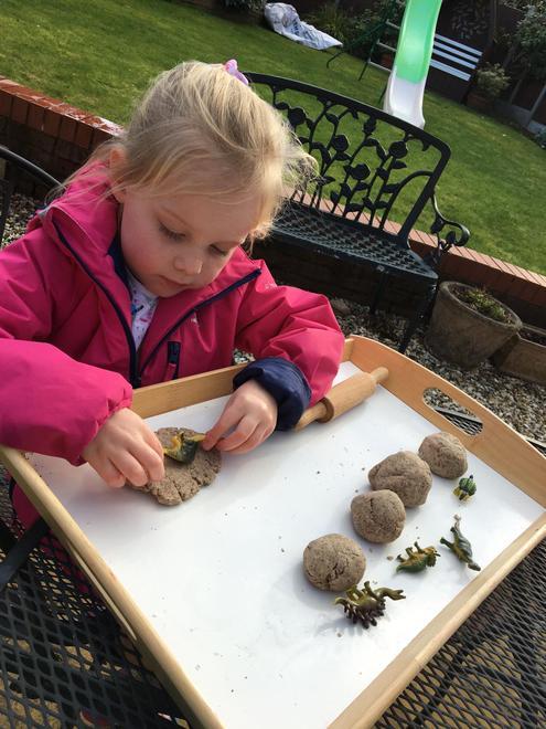 Exploring fossils