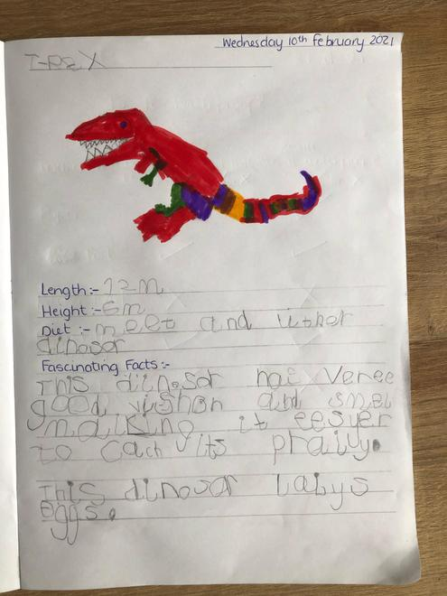 More dinosaur facts