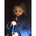 Exploring torches