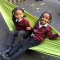 We have been working as a team in our hammocks!