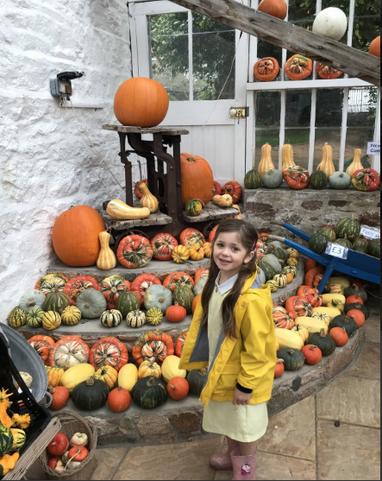 Year 1 visited the Pumpkin Farm