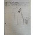 Ava's giraffe poem
