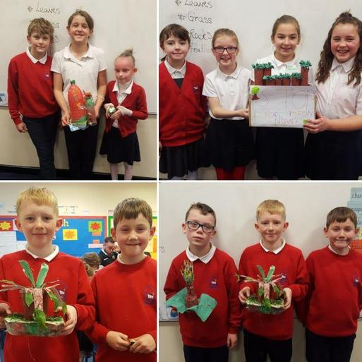 Class projects in honour of the rainforests