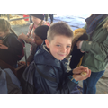 Schools' Farm Fair - Holding baby animals!