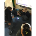 programming with beebots October 19