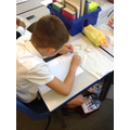 Sculpting our teeth in clay- Y4