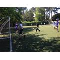 Bubble Socially distanced handball