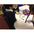 Y2 Sorting Animals by their Habitats