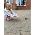 Charming the birds!