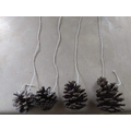 strings on the pine cones to hang