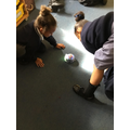 programming with beebots Oct 19